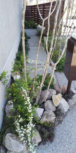植栽のススメ